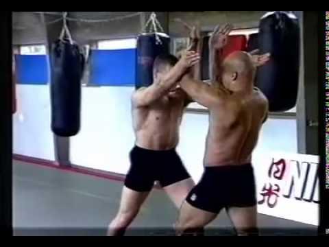 Bas Rutten  Superior Free Fight Techniques Volume: 5   Street Self Defense