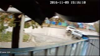 У костанайца украли собаку 9.11.2016