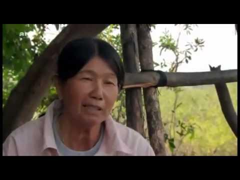 Vidéo Mekong, le fleuve
