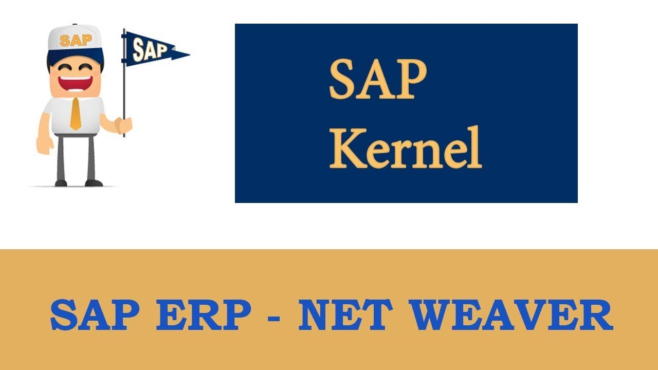 Erp Sap Basis Net Weaver Sap Kernel Upgrade System
