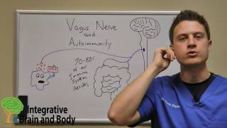 The Vagus Nerve and Autoimmunity