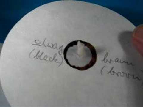 Papier-Chromatographie Mit Stabilo Point 88 Chromatography With Stabilo Point 88
