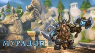 Heroes of the Storm — Мурадин