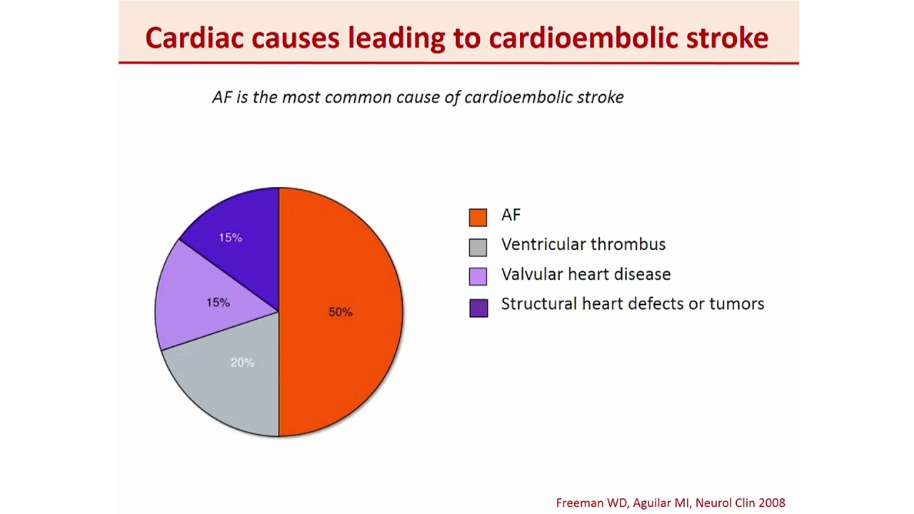 Coagulation and ischemic stroke - W Doehner - YouTube