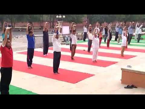 Yoga in Albert Hall Museum