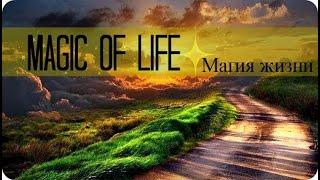 Для тех кто ищет Истину о получении Знания Магия жизни