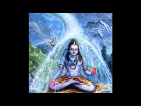 The Vision 12 - An Episode From The Life History Of Sri Ganapathy Sachchidananda Swamiji