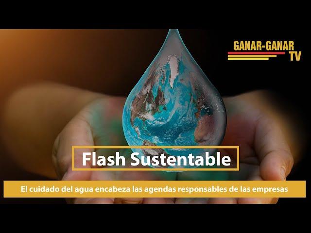 Flash Sustentable: El cuidado del agua encabeza las agendas responsables de las empresas