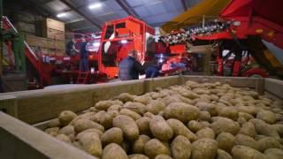 Journée technique matériels de stockage Grimme avec Casa Service Machine