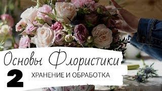 Основы Флористики. Урок 2. Хранение и обработка срезанных цветов.