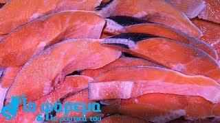 Φιλετάρισμα Τόνου Tuna Filleting