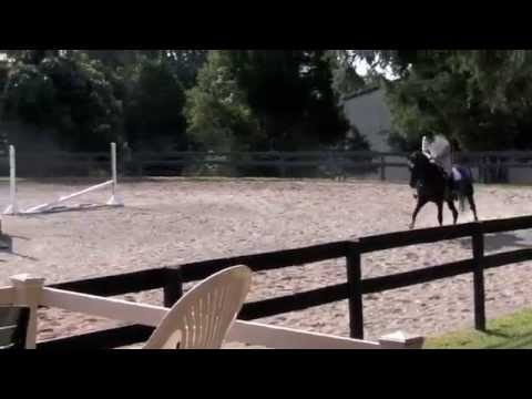 Matt Hollberg riding Ryka