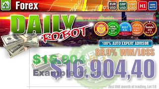 Forex Daily Robot: how it works