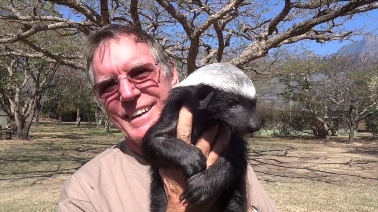 Moholoholo Rehab Centre South Africa | Meet A Baby Honey ...