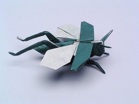 Origami Flying Grasshopper Robert Lang Help On Step 31 36