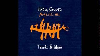 Bridges.avi