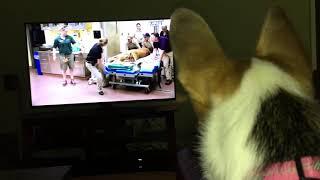 Kami watching tv