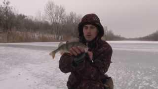За Крупным Зимним Окунем. Мастер-класс 276 HD. For big perch with winter spoon-bait..