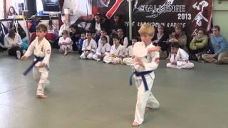 Miles Ao Obi No Kata 2
