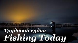 Трудовой судак. Поиск мест для ночной ловли - Fishing Today