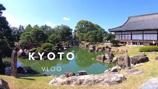 일본 교토 브이로그 | 초가을 교토여행 (갬성카페, 그…