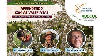 Aprendendo com as Valerianas - Andrea D´Angelo, João Volkmann e Ronaldo Lempek