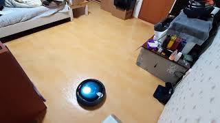 삼성 스마트 탱고 로봇 청소기 청소 영상