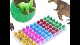 Яйцо с сюрпризом.Растущие яйцо динозавра Дино игрушка.Egg with a surprise to grow dinosaur eggs
