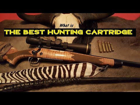 What Is The Best Hunting Cartridge?