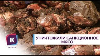 300 000 порций шашлыка уничтожили бульдозером
