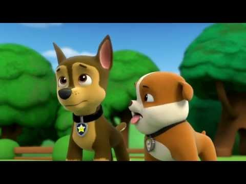 Pups and the Kitty-tastrophe/Pups Save a Train
