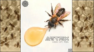 Download Astrix - High on Mel MP3 song and Music Video