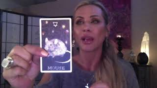 Pisces June 2018 Intuitive Reading