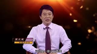 《为家乡推介》沙河市市长王文玉