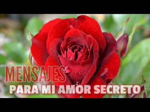 Poemas De Amor Amor Secreto Versos De Amor By Imagenes Poemax