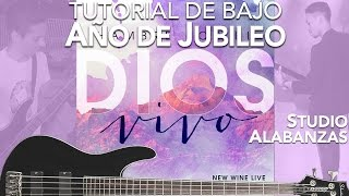 New Wine - Año de Jubileo (tutoriales bajo)