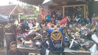 Bantengan kencono suro joyo feat Banteng NASIONAL LIVE MANGIR