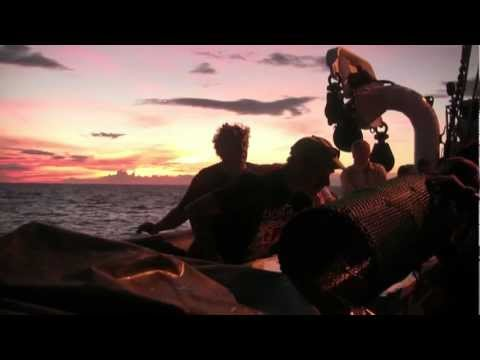 Science in Action: Philippine Deep Sea Expedition | California Academy of Sciences