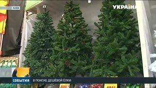 Как сэкономить при покупке новогодней елки(, 2016-12-26T18:14:11.000Z)