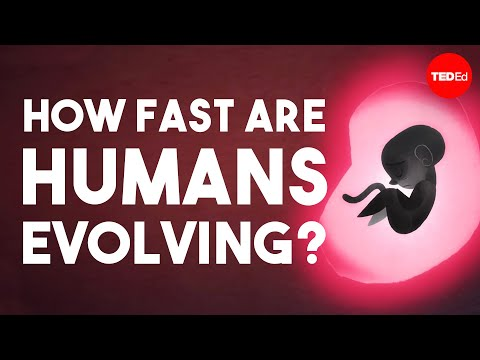 Video image: Is human evolution speeding up or slowing down? - Laurence Hurst
