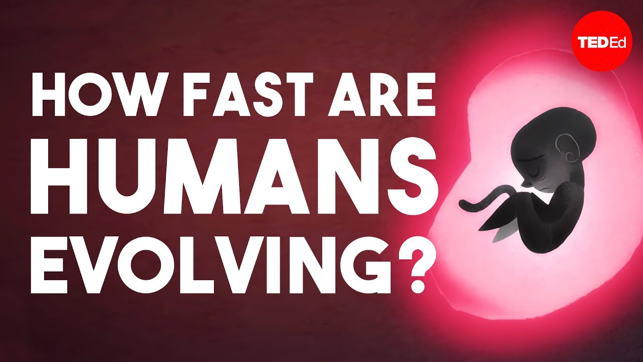 Is human evolution speeding up or slowing down? - Laurence Hurst