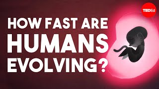 Is human evolution speeding up or slowing down?  Laurence Hurst