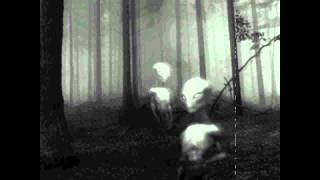 Malevolent Trailer - Alien Abduction