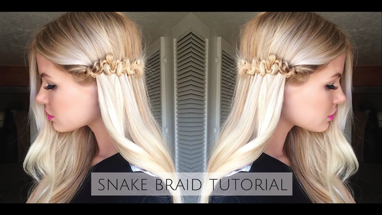 how to do the snake braid step by step wwwpixsharkcom