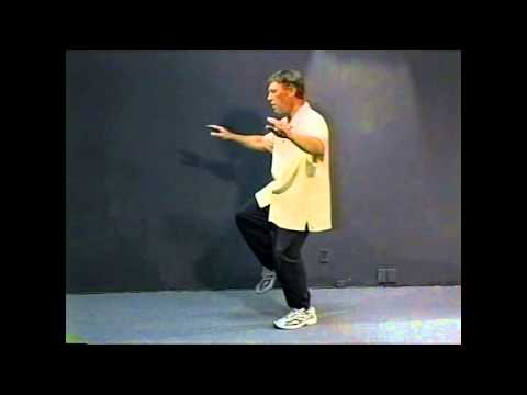 Yang Style Tai Chi Long Form Special Lesson - The Torso and Eyes