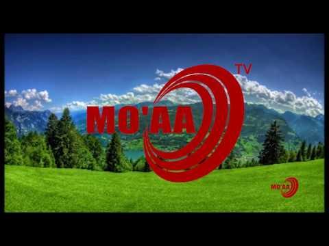 """MO'AA TV: """"Ergaa ganamaa"""" 'Yesuus kan inni dhufe si fayyisuufi' Luba Qannoo Galaan."""