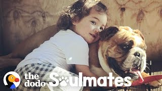 Time Lapse of Bulldog Growing Up with Little Girl | The Dodo Soulmates