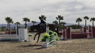 Small Advantage- Work off CPHA Equitation Coachella  2018