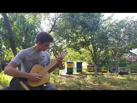 Старинная французская мелодия//Гитара//Игра на гитаре