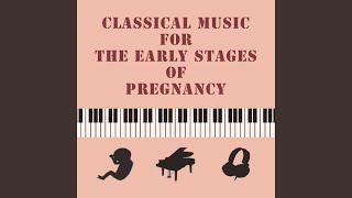 바흐 : 칸타타 중 예수, 인간의 소망의 기쁨 (Bach : Cantata BWV.147 - Jesu Joy Of...